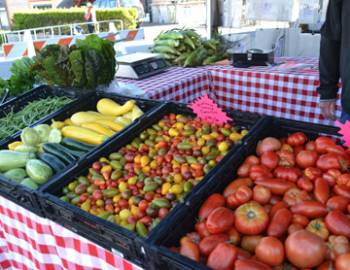 Seabrook hosts some of the liveliest farmer's markets on the Washington Coast