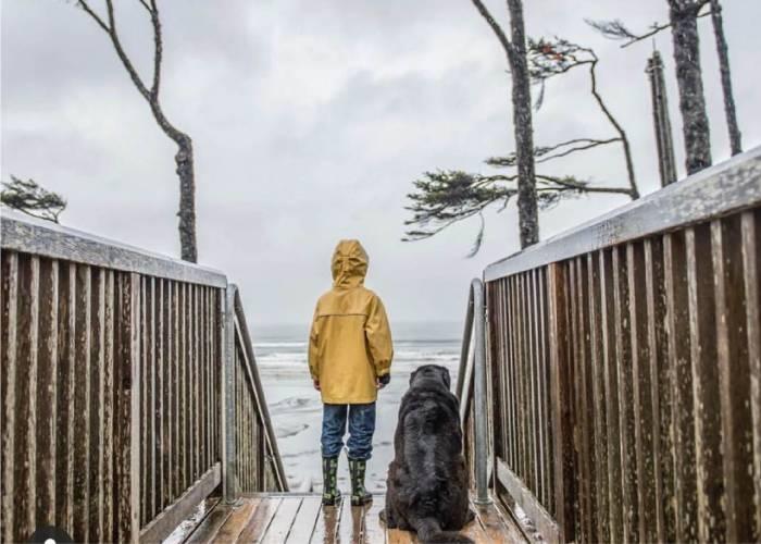 Midweek Winter Savings