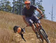 Mountain biking with a dog and Buck's Bikes