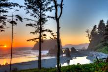 When researching vacation ideas in the Pacific Northwest, you should consider the charming coastal town of Seabrook!