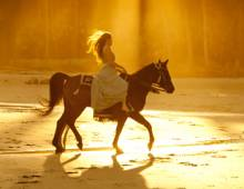 Ride horses on the beach while staying at Seabrook