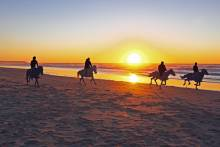 Discover some of the best things to do in Ocean Shores, WA!