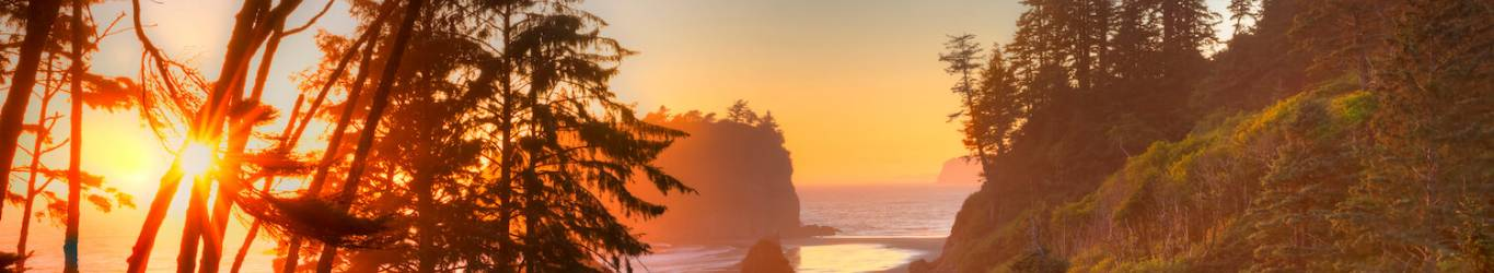 Learn about our favorite beaches near Seattle, WA!